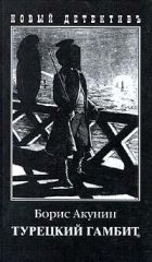 Книга Турецкий гамбит - Автор Акунин Борис